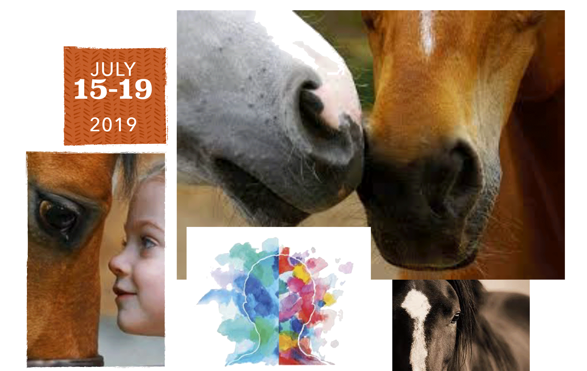 MINDCAP EQUESTRIAN DAY CAMP - JULY 15-19, 2019